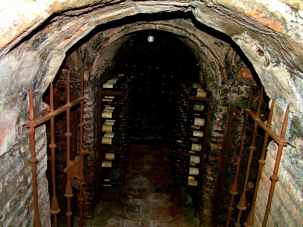 Wine Cellar  by marzanstudios