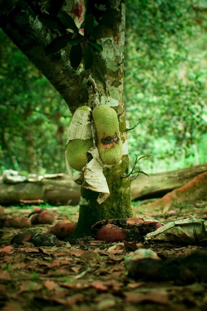 Fruit Season Mood by fero