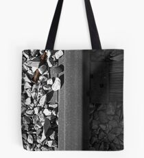 Unsecured Tote Bag