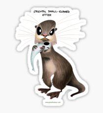 Oriental Small Clawed Otter Sticker