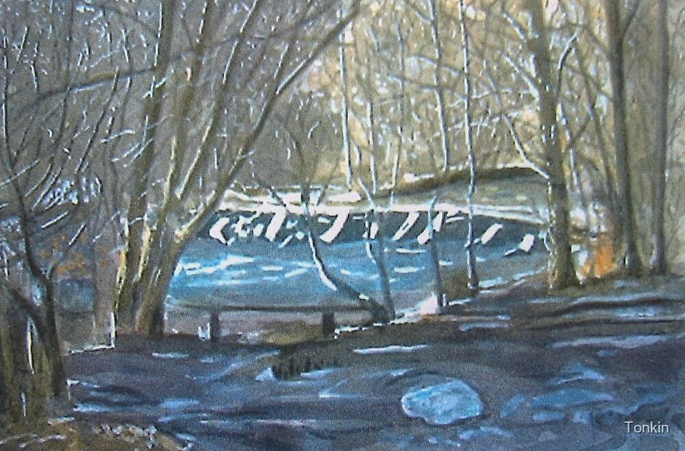Tarr Steps 2, Exmoor, Somerset by Tonkin