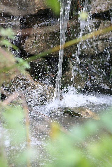 Water in Motion by Vanessa Combes