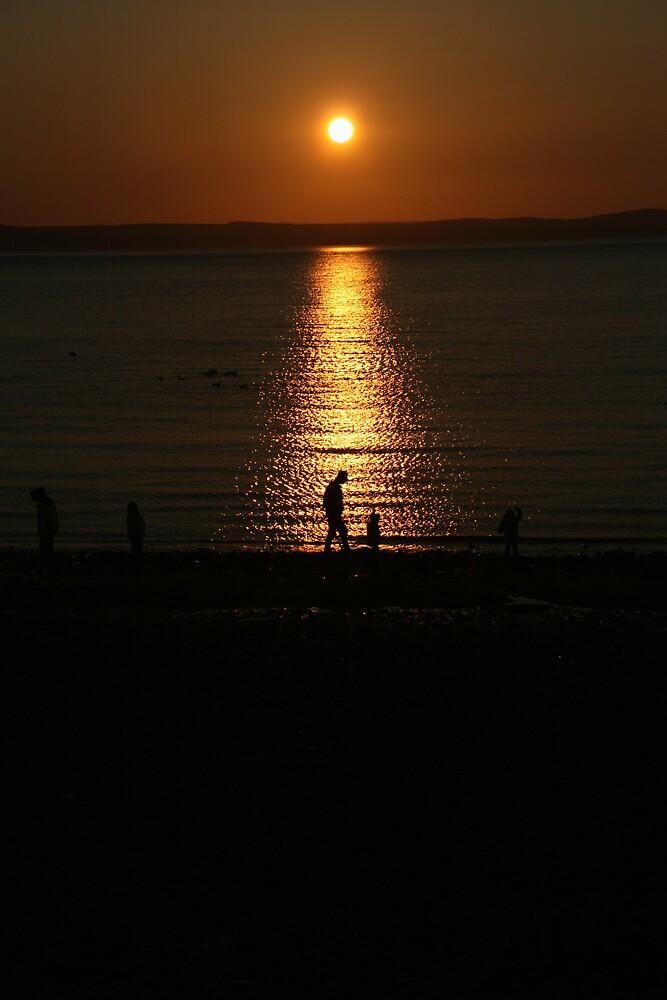 Evening Stroll by Ian Johnston