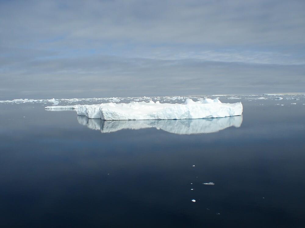 Reflections in Antarctica by Zac Gillett