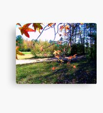 My Front Yard Canvas Print