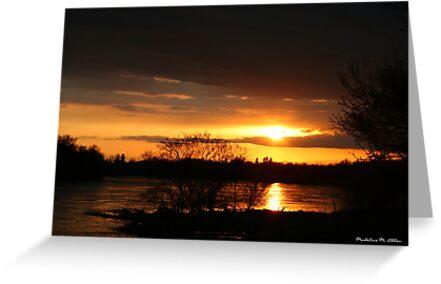 SUNSET ON THE PRAIRIE by Madeline M  Allen