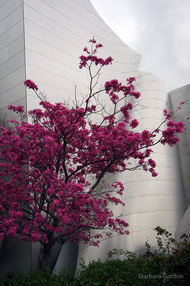 Pink Tree Symphony by Barbara Gordon