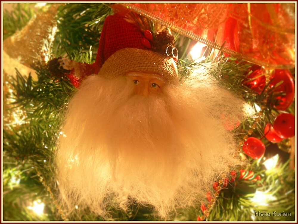 Have you been good this year?? by Nisha Kurien