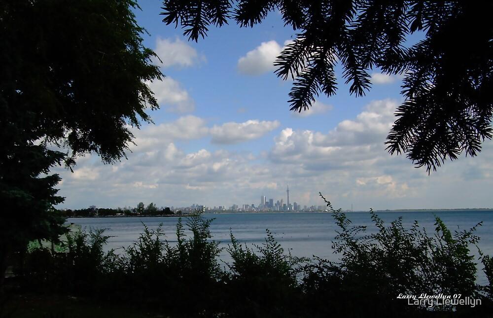 Toronto Skyline in Summer by Larry Llewellyn