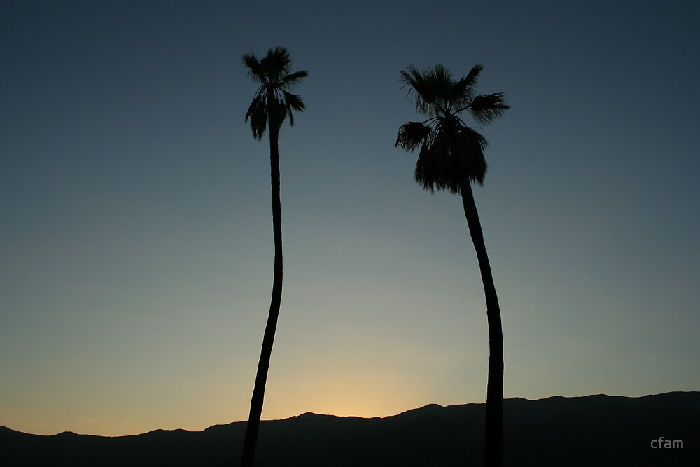 The Two Palms by cfam
