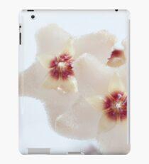 Hoya flowers macro shot iPad Case/Skin