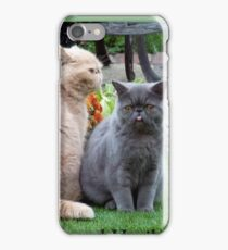 Kevin and Haribo iPhone Case/Skin