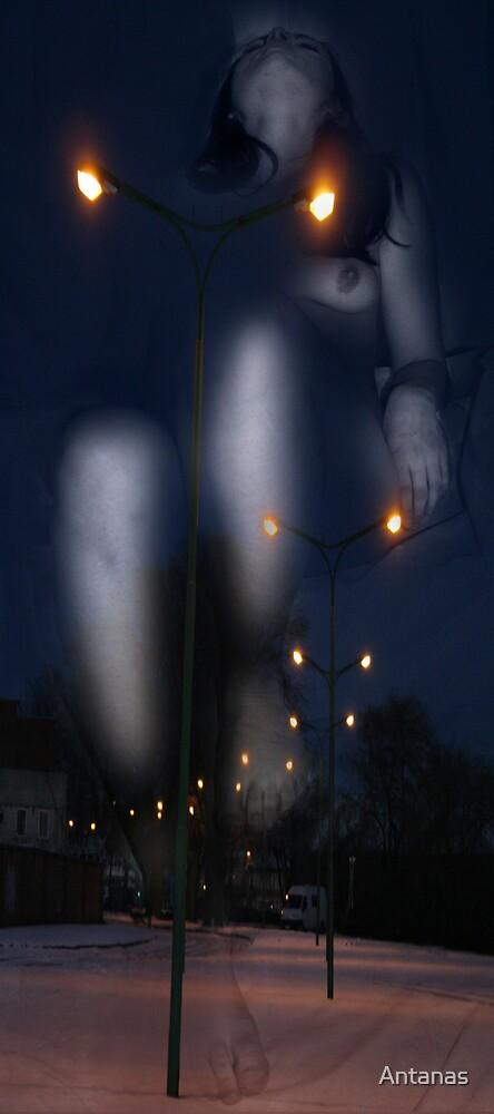 The Night Dancer by Antanas