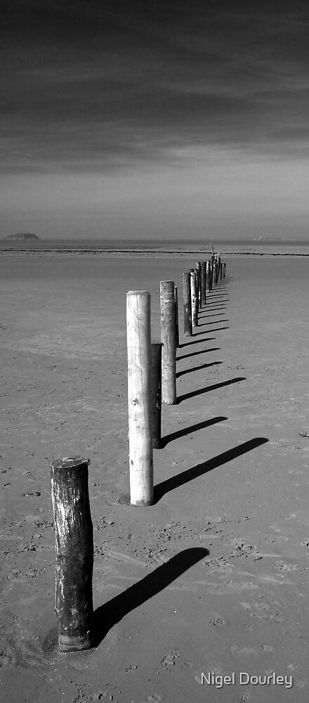 Beach Poles by Nigel Dourley
