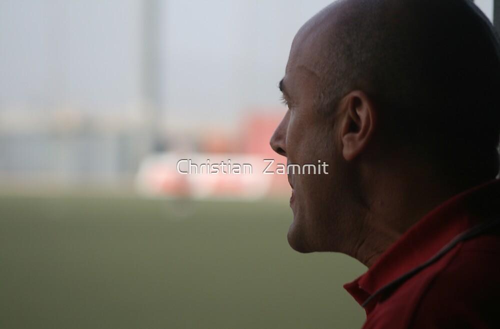 The coach by Christian  Zammit