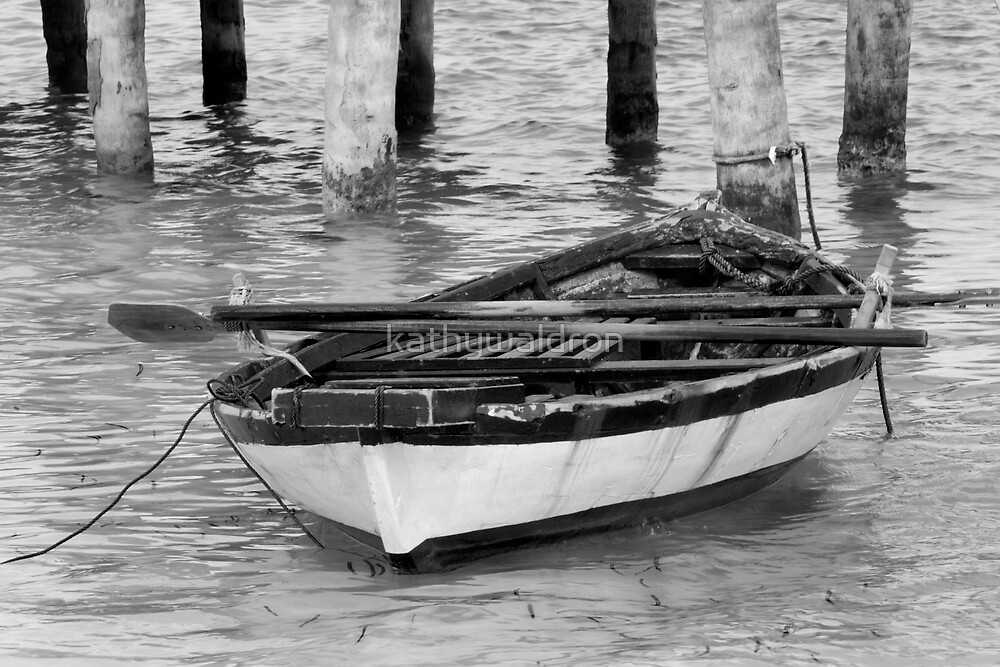 rowing boat by kathywaldron