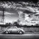 Beetle on the Bridge by Nigel Bangert