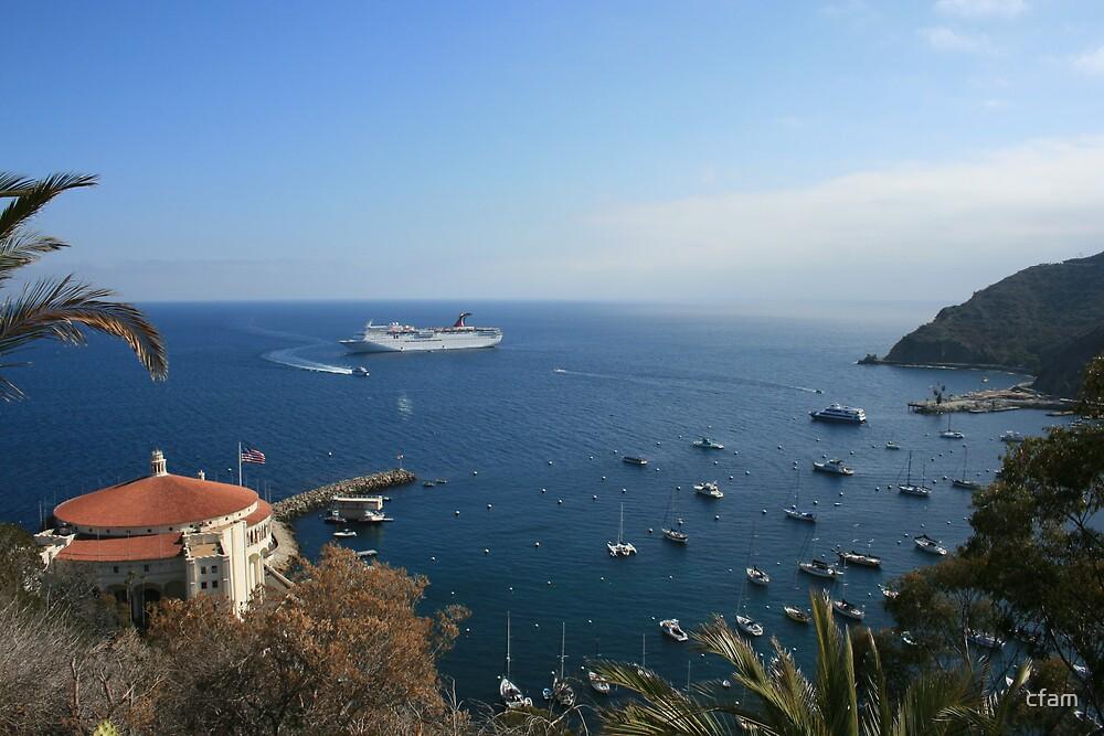 Catalina Island Bay and Carnival Cruise Ship by cfam