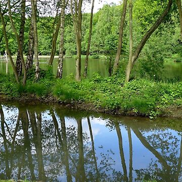 Reflections in a side stream at Newmillerdam by AnnaMyerscough