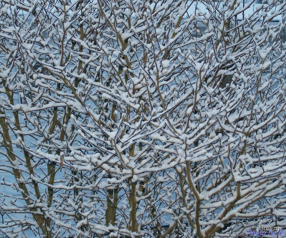 Crystalized Snow by Breezy