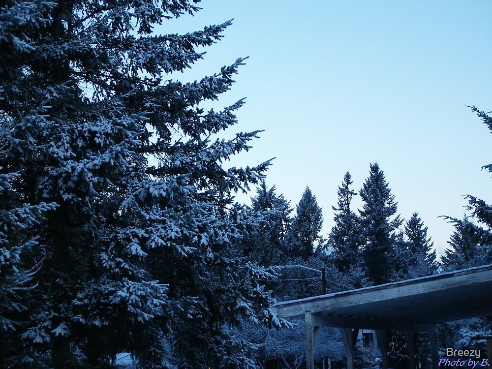True Winter Blue by Breezy
