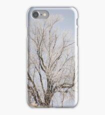 Winter in Wisconsin iPhone Case/Skin