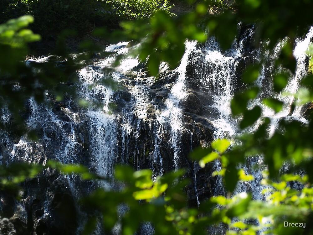 Falls by Breezy