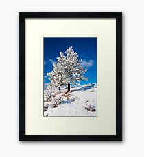 Nature's Flocking Framed Print