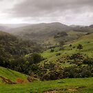 Looking Towards the Otways by Christine Smith