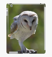 Casper - Australian barn owl iPad Case/Skin