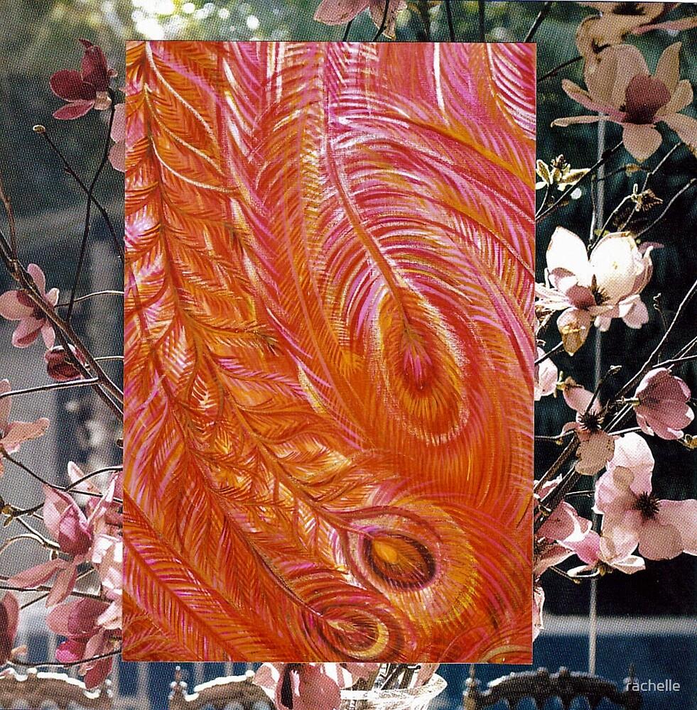 phoenix feathers  by rachelle