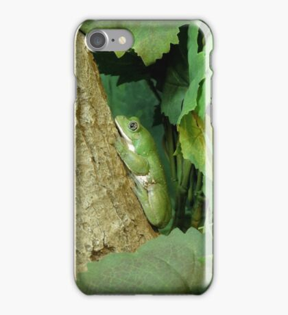 Mexican Leaf Frog iPhone Case/Skin