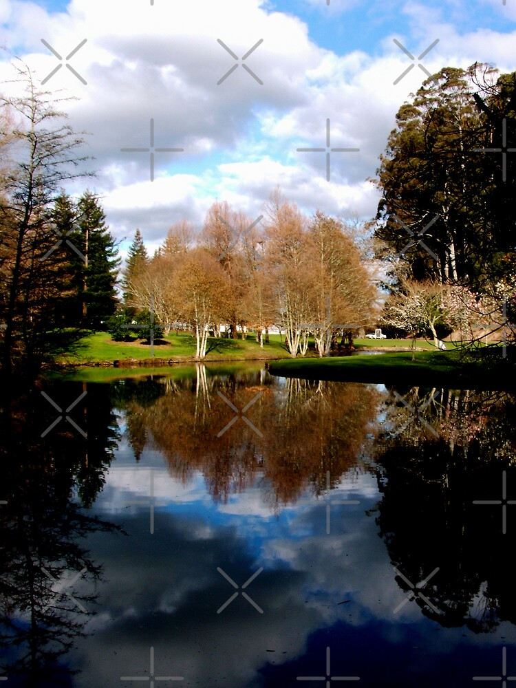 Reflective Moments by *V*  - Globalphotos