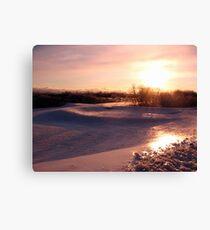 Icy Landscape Canvas Print