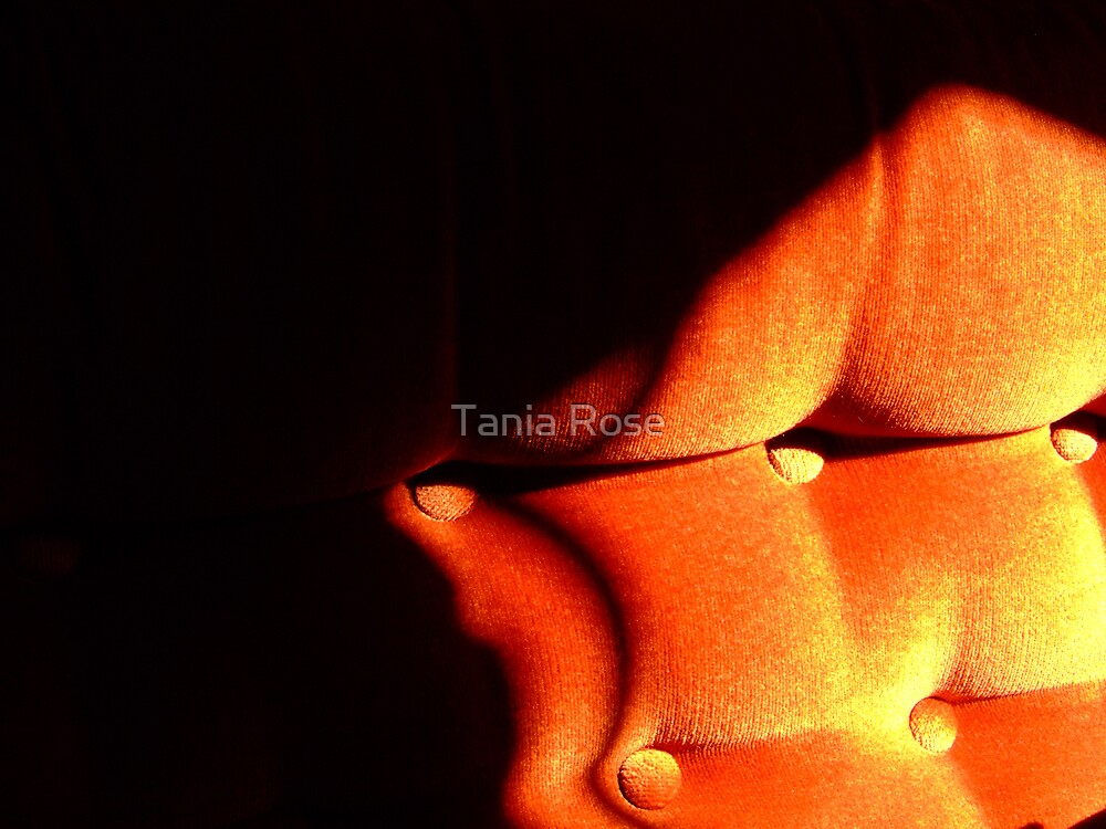 orange couch by Tania Rose
