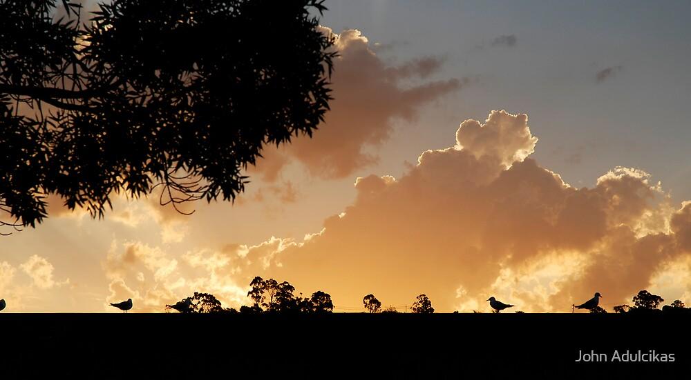 birds as trees by John Adulcikas