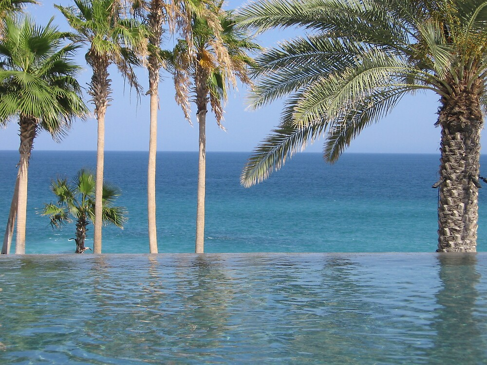 Endless Sea in Los Cabos by Harriette Knight