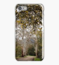 Ghost Gums - Mountain Ash and Mt Macedon iPhone Case/Skin