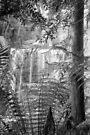Waterfall, Southern Tasmania by BRogers