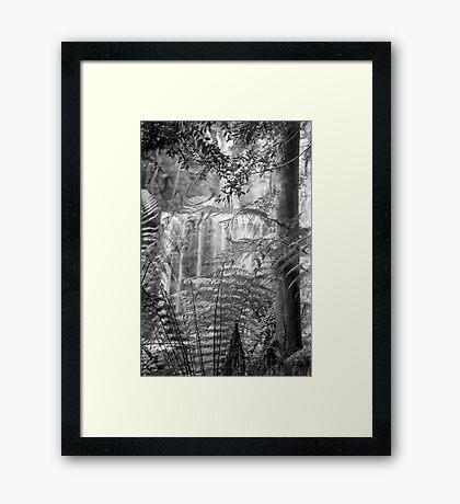 Waterfall, Southern Tasmania Framed Print