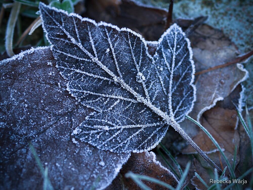 Frozen by Rebecka Wärja
