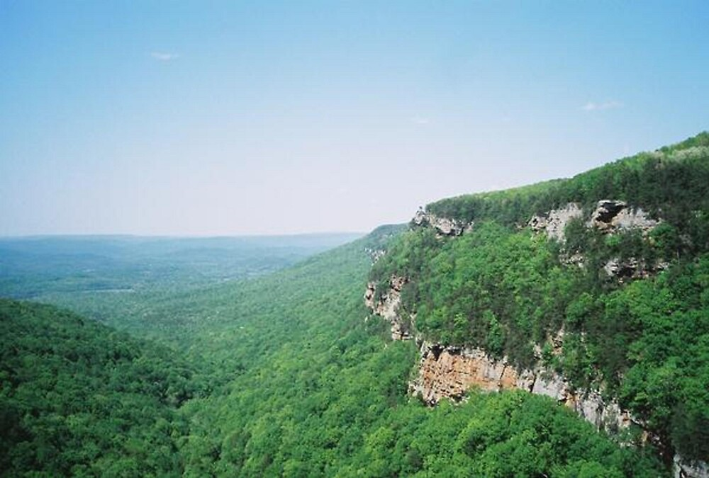 View from Cloudland Canyon by Meggerhun