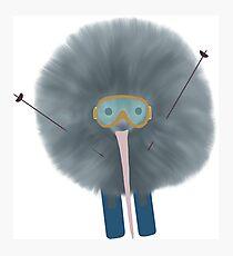 Goggle Wearing Ski Kiwi Photographic Print