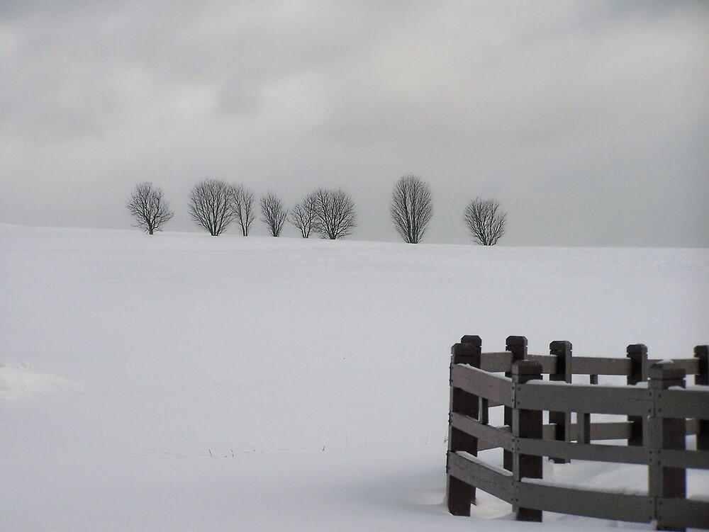 Snowy Landscape by Gene Cyr