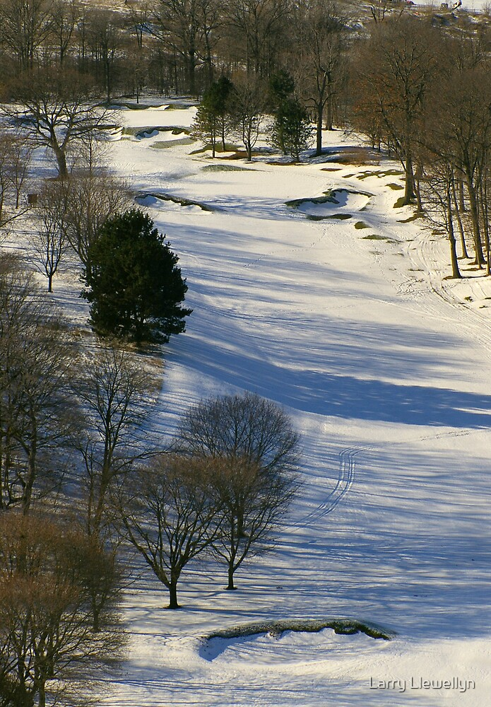 The Nineth Hole Somewhere Under There! by Larry Llewellyn