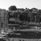Arch of Constantine by Lisa Trainer