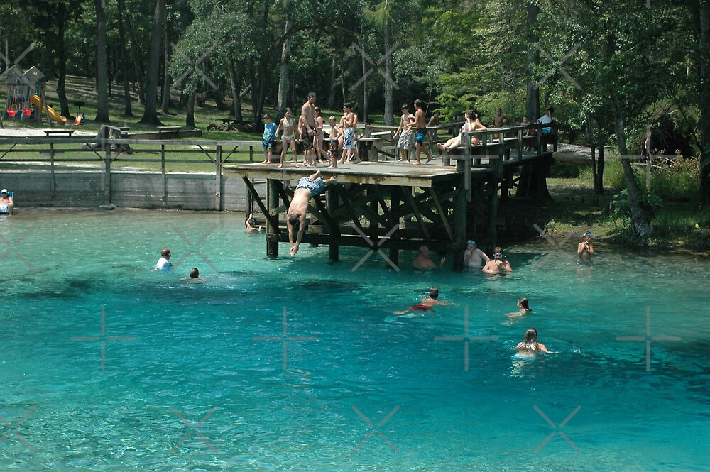 Blue Springs Divers by Stacey Lynn Payne