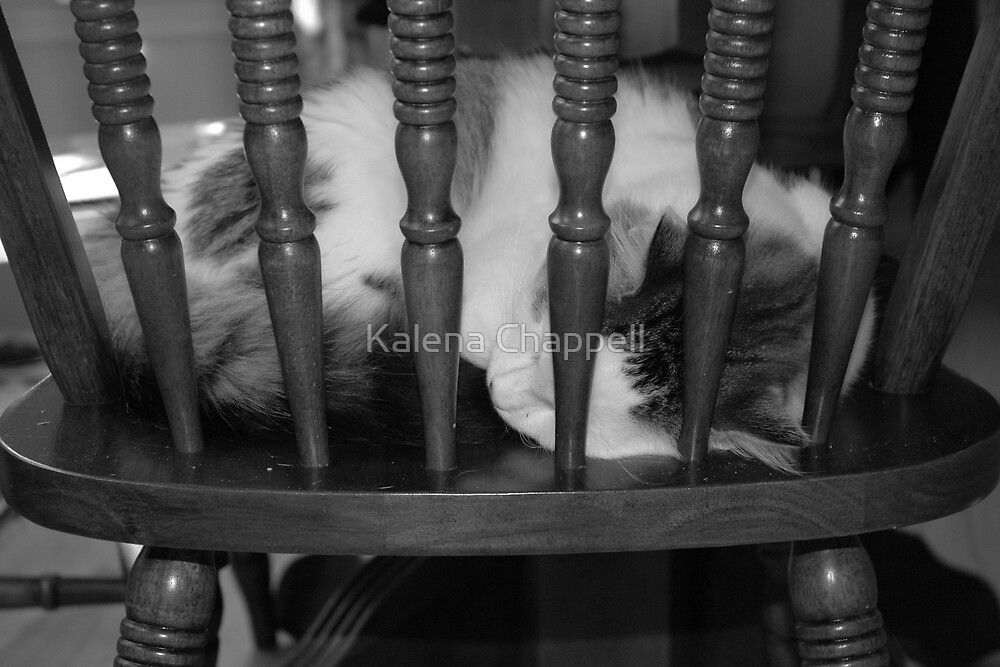 Behind Bars by Kalena Chappell