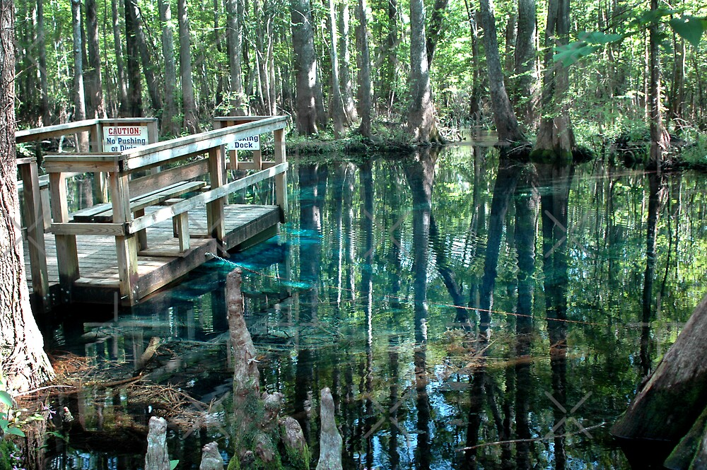 Little Blue Spring Pool & Dock by Stacey Lynn Payne