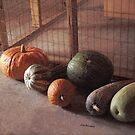 Harvest by © Joe  Beasley IPA